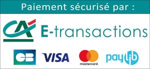 ca-e-transactions-cb-visa-mastercard1
